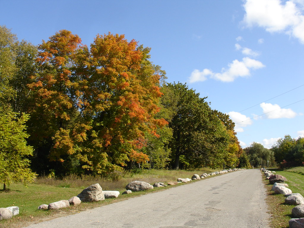 Fall colours at Greenwood Conservation