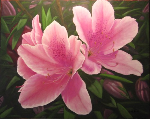 Azaleas [ Sold ] by Sid's art