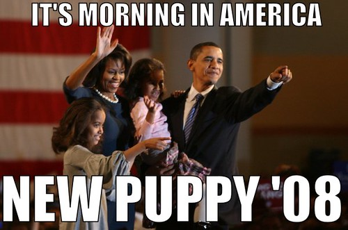 I fully support President Obama's Puppy Initiative