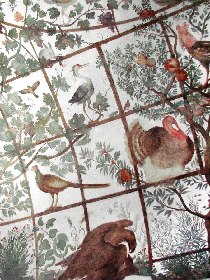 Fresques du studiolo de la villa m dicis rome flickr for Jardin villa medicis rome