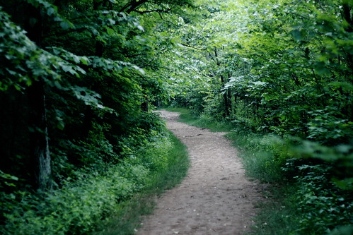 Talcott Mountain path