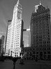 Black and white Chicago