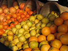 calamondin(0.0), plant(0.0), clementine(1.0), citrus(1.0), orange(1.0), valencia orange(1.0), meyer lemon(1.0), kumquat(1.0), produce(1.0), fruit(1.0), food(1.0), tangelo(1.0), sweet lemon(1.0), bitter orange(1.0), tangerine(1.0), mandarin orange(1.0),