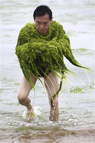 Man in seaweed