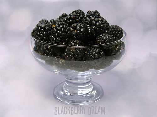 Blackberry Dream