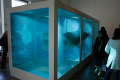 a description of the physical impossibility of death in the mind of someone living by damien hirst The physical impossibility of death in the mind of someone living, 1991 by damien hirst conceptual art installation.