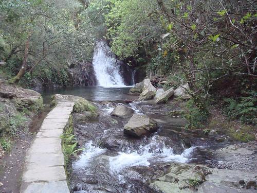 verde portugal água serradoaçor côja fragadapena pardieiros