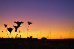 Los colores de La Mancha