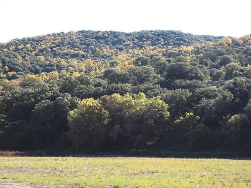 El paisaje del clima mediterr neo continentalizado for Clima mediterraneo de interior