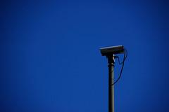 Tendidos en el prado dejándonos observar por el infinito azul :)