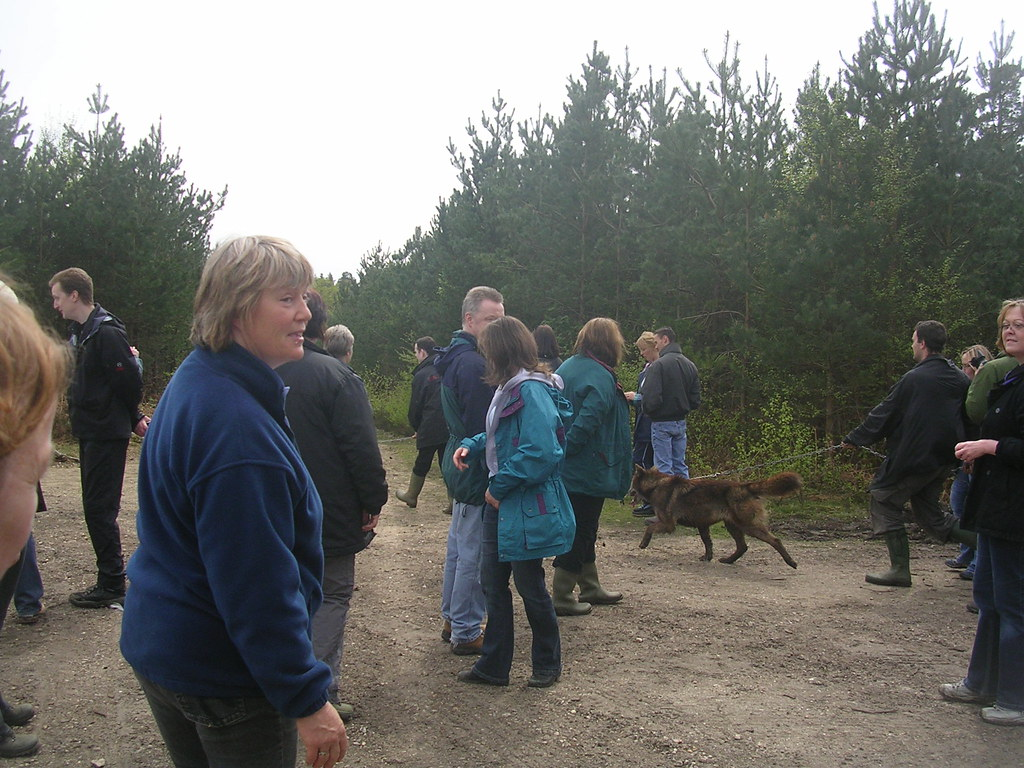 People walking with wolves. Mortimer to Aldermaston