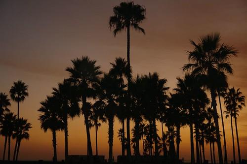 Atardecer por las playas del Big Sur recorriendo la costa de california por el big sur - 2528666598 34a3906517 - Recorriendo la costa de California por el Big Sur