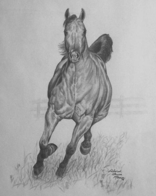 art-pencil drawing running horse | Explore D. MOSIER's ...