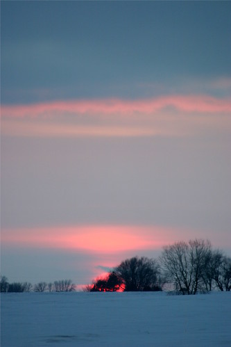 pink blue trees winter sunset sky snow clouds horizon iowa february markevans chimothy27