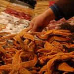 Fried Starfish Street Food - Beijing, China