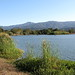 Small photo of Almaden Lake with Mt.Umunhum in the background