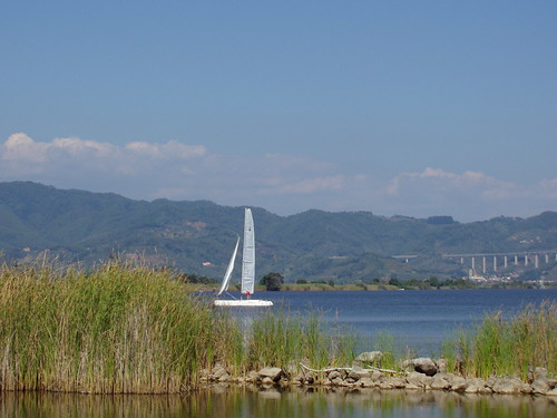 Torre del Lago, sailboat on the lake