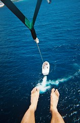 sports, sea, parasailing, ocean, extreme sport, water sport,