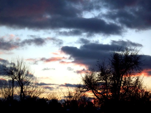 trees sunset sky evening scenery springfieldmissouri theozarks rottladyhome
