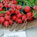 Farmers Marker - Radishes