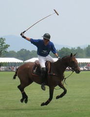 stick and ball games, animal sports, equestrianism, equestrian sport, sports, stick and ball sports, polo, team sport, ball game,