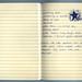 Poemcrazy Journal