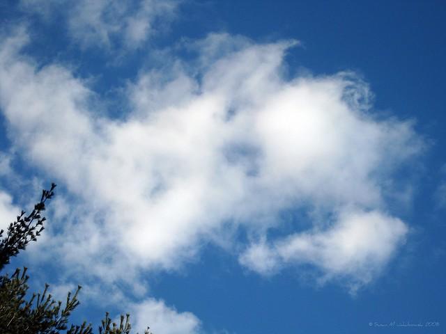 2008-02-28 Clouds