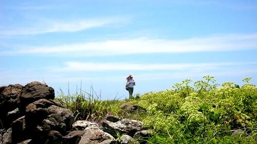 西嶼坪島上風光。圖片來源:台灣環境資訊協會