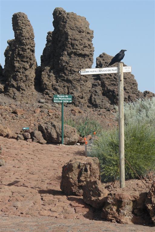 Punto más alto de La Palma, el llamado Roque de los Muchachos Roque de los Muchachos, donde europa se une con el cielo - 2817138003 730e695216 o - Roque de los Muchachos, donde europa se une con el cielo