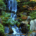 Heavenly Falls in the Fall at the Japanese Gardens