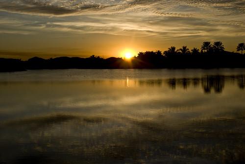 sunset wellington