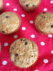 Vegan Banana Chocolate Chip Coconut Muffins