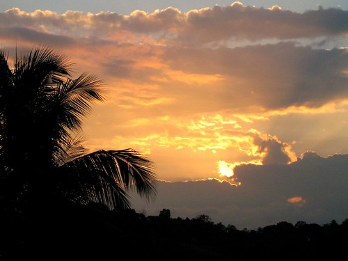 sunset mountain tree clouds sunrise coconut palm jamaica