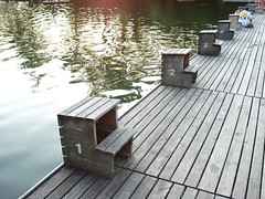 outdoor structure(0.0), swimming pool(0.0), roof(0.0), wood(1.0), boardwalk(1.0), deck(1.0), dock(1.0), walkway(1.0),