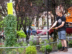 guerrilla gardening at flickr photo sharing. Black Bedroom Furniture Sets. Home Design Ideas