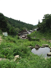 View from Jigokudani Monkey Park
