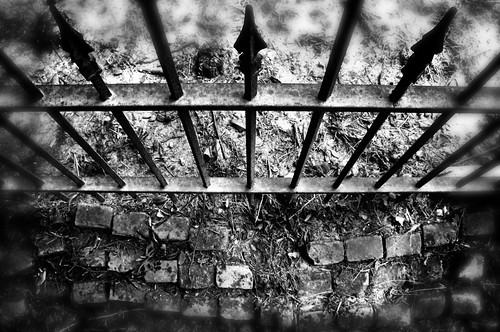 Fence & Bricks