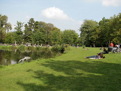 Vondel Park, a day at paradise - Things to do in Amsterdam