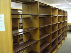 shelving, shelf, furniture, wood, room, library, bookcase, interior design,