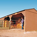 Premier Tall Ranch Loafing Shed (10x36)