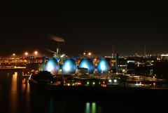 Fauleier im Hamburger Hafen