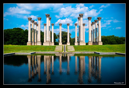 Capital Columns at the National Arboretum