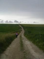 To Saltdean