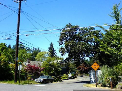 home for sale in lake oswego   DSC01474