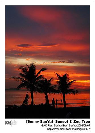 自然 生態 五指山 海南 三亞 攝影 海南島