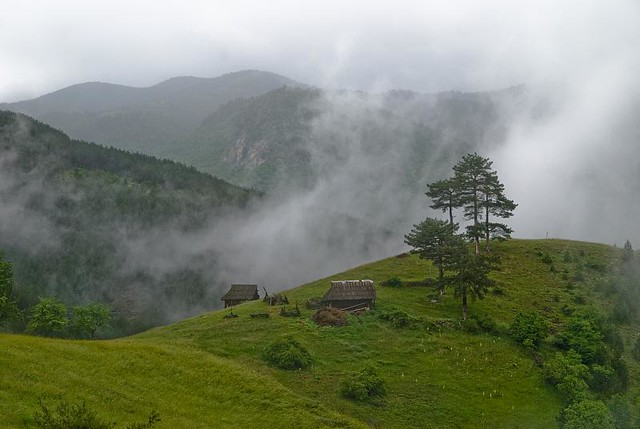 Dreaming on Zlatibor 3 - Mokra Gora (Wet Mountain)