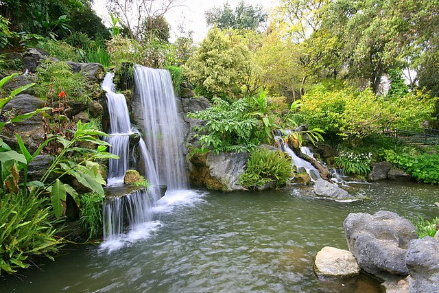 Arboretum Arcadia Ca Flickr Photo Sharing