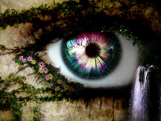 eye, spring, flower, photo, manipulation