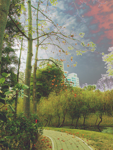 点描风景 | flickr – 相片分享!