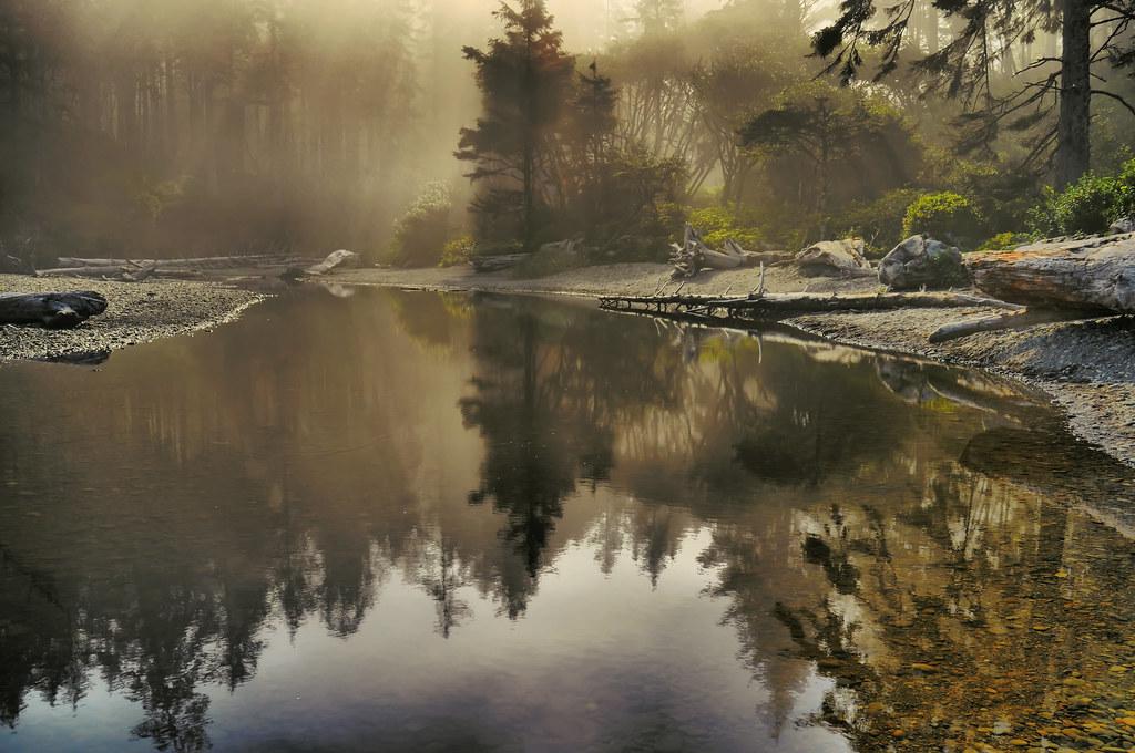 Ruby Beach, Forks area, Trail head, Washington State by Don Briggs